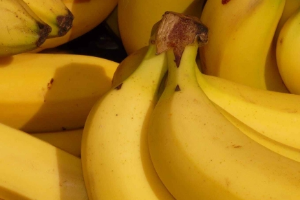 Bananacalypse – A Pointless Short Story About Panicking and Impending Doom